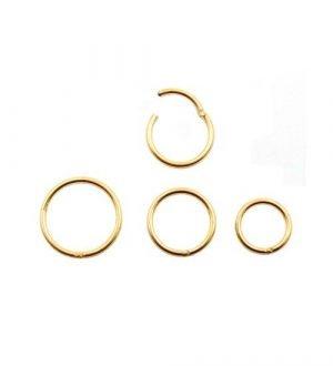 Piercing anello Segment con cerniera in Acciaio chirurgico 316L